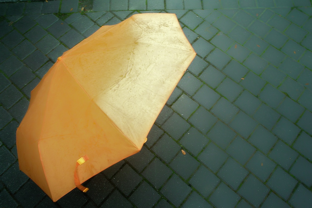 My so precious umbrella